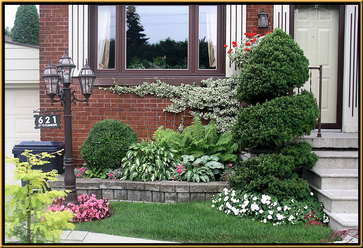 Shade GardenShade Gardens. Shade Garden Ideas For Front Of Homes. Home Design Ideas